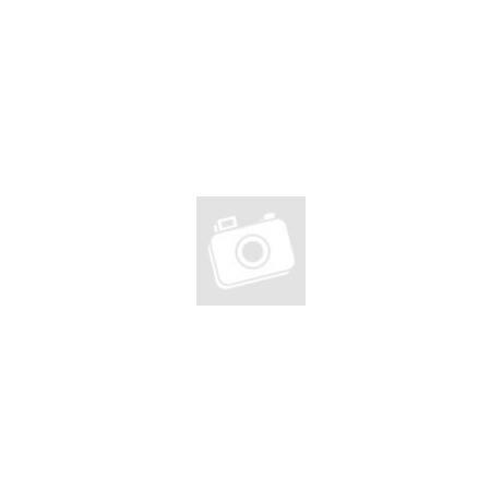 Apple iPad/iPad2/iPad3 füles-zippzáros táska - fekete